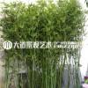 仿真竹子室内装饰假竹子隔断屏风挡墙造景室外装饰竹盆栽加密